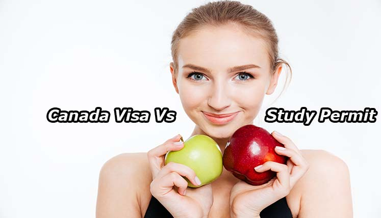 Canadian Visa Vs Study Permit – What is the Difference?