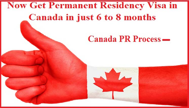 How To Get The Permanent Residency Visa in Canada in just 6 to 8 months