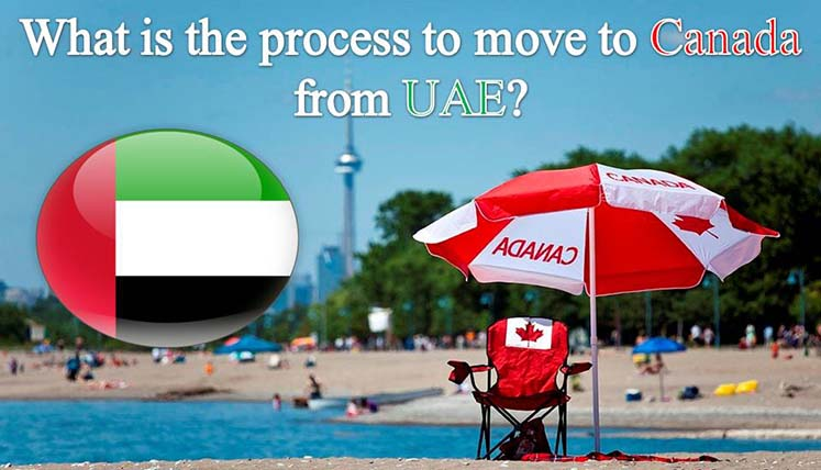 What is the process to move to Canada from UAE? Do you need an Immigration Consultant for it?