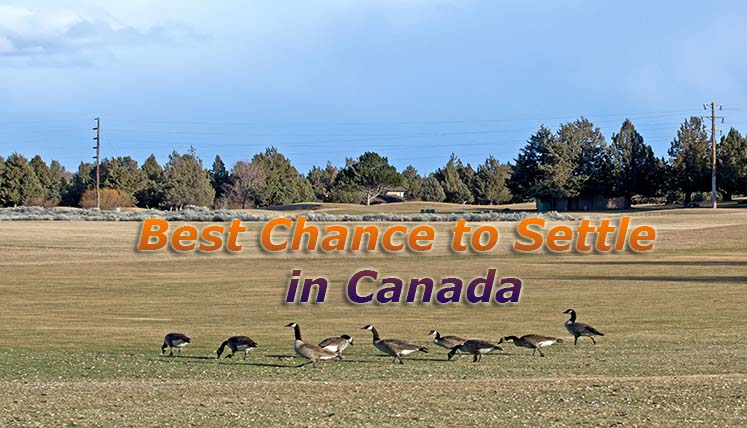 It's the Best Chance to Settle in Canada! Requirement of Eligibility Points is at its lowest