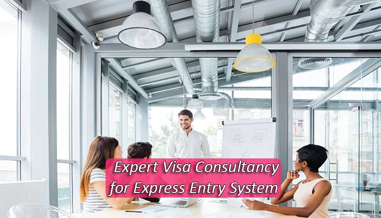 What makes Visas Avenue an Expert Visa Consultancy Service for Express Entry System?