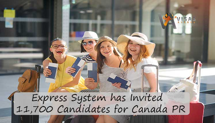 Express Entry System has invited record 11,700 Candidates for Canada PR in October- Apply now to be the next
