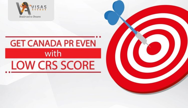 Disappointed with High CRS Score Demand from IRCC? Don't worry, you Still have Options to get Canada PR?